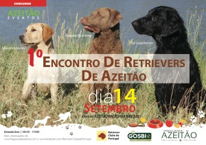 Cartaz - Retrievers 2014